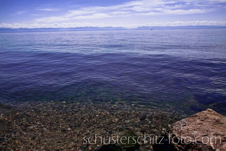 Eines der vielen Wunder des Baikalsees ist sein außergewöhnlich reines und klares Wasser. Hauptverantwortlich dafür ist ein winziger, etwa ein bis zwei Millimeter langer Krebs - Epischura Baikalensis. Dieser bis in die größten Tiefen des Sees vorkommende Krebs filtert das Wassser in dem er sich von Algen und Bakterien ernährt und im Gegenzug Sauerstoff produziert. Weitere wichtige Faktoren, die zur Klarheit des Wassers beitragen ist die ganzjährig relativ niedrige Wasssertemperatur sowie das Bodenrelief des Sees. Der Baikal besteht aus drei Becken, von denen jedes einen eigenen Strömungskreislauf hat. Dadurch wird die Verbreitung von Schadstoffen gehemmt.
